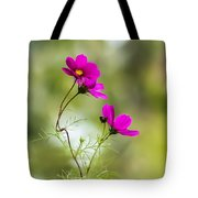 Purple Cosmos Flowers Square Tote Bag