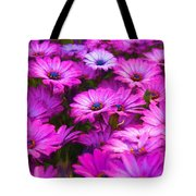 Purple Daisies Tote Bag