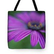 Purple Daisy Tote Bag
