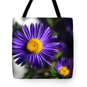 Purple Daisy Tote Bag by Yew Kwang