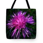Purple Dandelions 4 Tote Bag