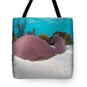 Purple Doze  Tote Bag