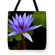 Purple Enchantment 6 Tote Bag