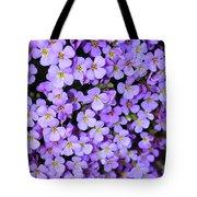 Purple Flowers - Rockcress Tote Bag