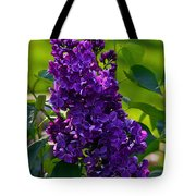 Purple French Lilac Tote Bag