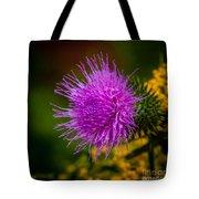 Purple Fringe Tote Bag
