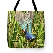 Purple Gallinule In Flight Tote Bag