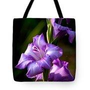 Purple Glads Tote Bag