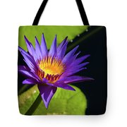 Purple Gold Tote Bag