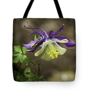 Purple Harlequin Columbine Tote Bag