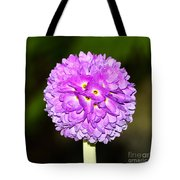 Purple Himalayan Primrose Tote Bag