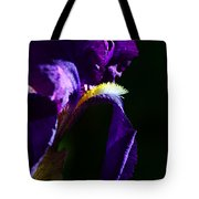 Purple Iris 2 Tote Bag