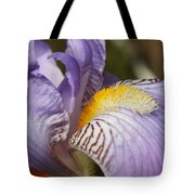 Purple Iris Closeup Tote Bag