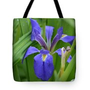 Purple Iris With Insect Tote Bag