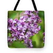 Purple Lilac Flowers Tote Bag