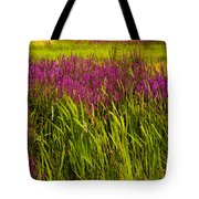 Purple Loosetrife And Cat-tails Tote Bag
