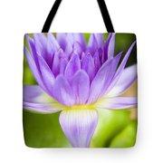 Purple Lotus Blossom Tote Bag