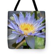 Purple Water Lily Flowers Blooming In Pond Tote Bag