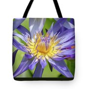Tropical Purple Water Lily Tote Bag