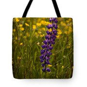Purple Lupin And Buttercups Tote Bag