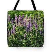 Purple Lupines In Summer Tote Bag