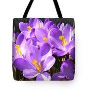 Purple Morning Tote Bag
