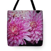 Purple Mums Tote Bag