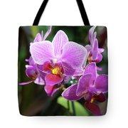 Purple Orchids 2 Tote Bag
