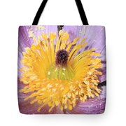 Purple Pasque Flower With Pollen Tote Bag