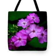 Purple Phlox By Earl's Photography Tote Bag