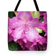 Purple Pink Horizontal Tote Bag