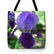 Purple Pleaser Tote Bag