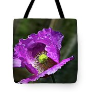 Purple Poppy Tote Bag