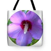 Purple Rose Of Sharon In Circle Frame Tote Bag