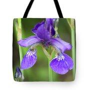 Purple Siberian Iris Tote Bag