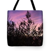 Purple Silhouette  Tote Bag