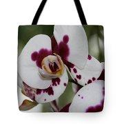 Purple Splash Orchid 3 Tote Bag