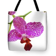 Purple Spotted Orchid On White Tote Bag