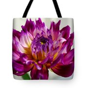 Purple Sunset Flower 1 Tote Bag