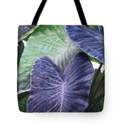 Purple Taro Tote Bag