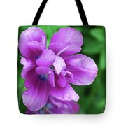 Purple Tulip Blossom With Dew Drops On The Petals Tote Bag