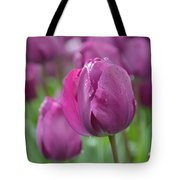 Purple Tulip With Water Drops Tote Bag