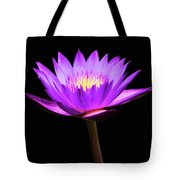 Purple Water Lily Flower Tote Bag