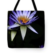 Purple Waterlily Tote Bag