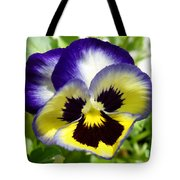 Purple White And Yellow Pansy Tote Bag