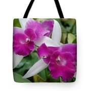 Purple White Orchids Tote Bag