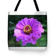 Purple Zinnia  Tote Bag
