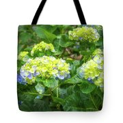 Purplea And Yellow Hydrangea Flowers Tote Bag