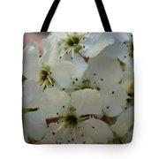 Purpleleaf Sand Cherry Blossoms Tote Bag