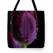 Purplelicious Tote Bag by Tracy Hall